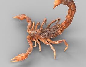 3D model game-ready scorpion Scorpion