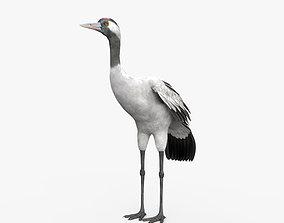 3D Common Crane HD