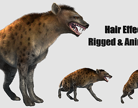 3D hair effected hyena wild dog