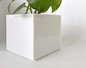 003f - Planter - Medium Cuboid With 3D printable model 1