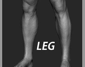 Leg Zbrush Sculpt 3D model