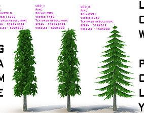 3D asset Pine V2