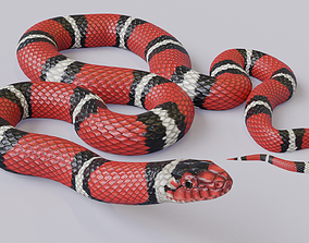 3D model Animated Scarlet Kingsnake