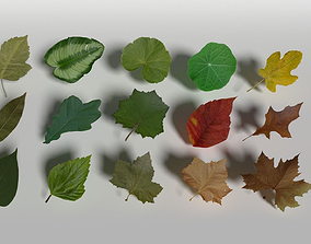 3D model Lowpoly Leaves Pack