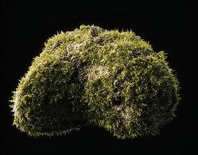 3D asset Moss Low Poly 14