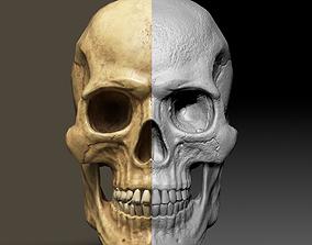 Skull Low Polly PBR 3D model