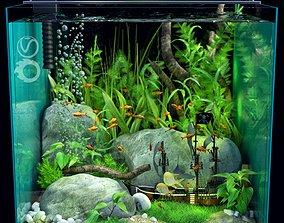 Aquarium grass 3D