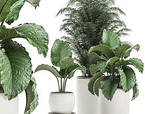 3D Plants in a white flowerpot for decor and interior 1