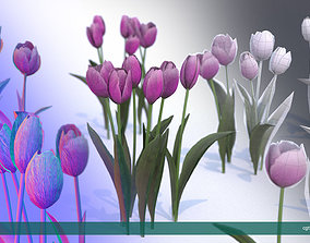 3D asset Tulips very LOW POLY detailed textures 63 1