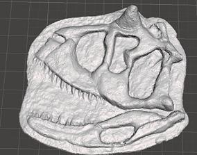 carnotaurus skull 3D printable model