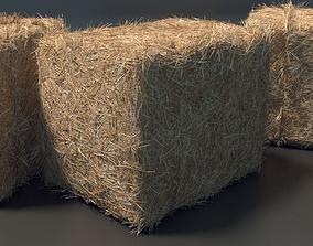 Farm Hay 3D asset