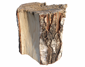 Tree Stump Used For Chopping Wood 3D model