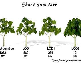 3D model Ghost gum tree