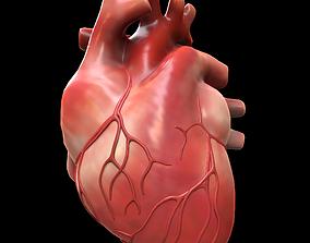 3D model low-poly heartbeat Human Heart