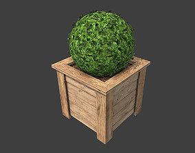 Flower Bed 3D model