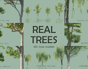 3D Real Trees Pack