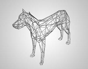 3D model of dog skeleton lowpoly