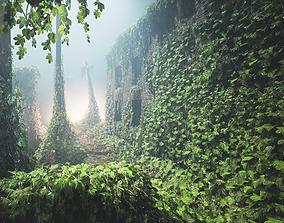 Ivy Set for Games 3D model