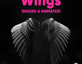 Angel Wings Rigged Animated mystic 3D