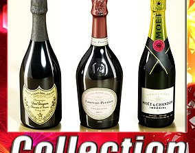 3 Champagne Bottles Collection 3D