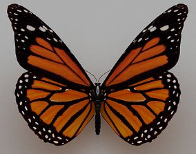 3D model flutter butterfly