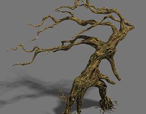 3D Strange - dead tree
