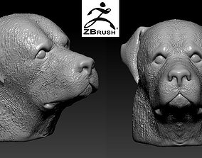 3D printable model rottweiler head