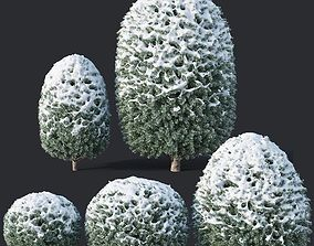 Taxus Baccata Nr10 topiary winter set 1 3D
