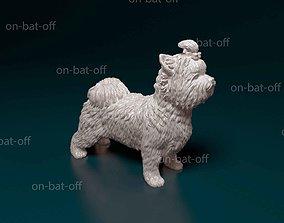 Biewer yorkshire terrier 3D print model