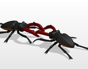 stag beetle 3D print model