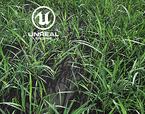 animated Realistic Grass 10 - UE4 Asset and FBX Files