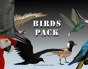 3D model Animated Birds Pack