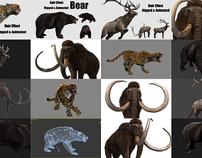 3D model animated animals with hair effect panther bear 1