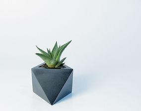 Octaedro planter 3D print model