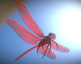 Animated Dragonfly 3D model