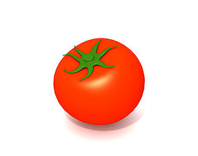 3D model plant Tomato