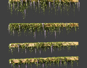 3D model Wisteria blooming plant for beams or ceilings