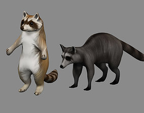 raccoon 2 animal in one archive 3D model
