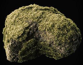 Moss Low Poly 12 3D model