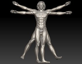 Vitruvian Man High For 3D Printing