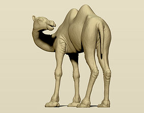 Camel Bactrian 3D printable model