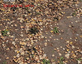 3D model Ground autumn scan 2