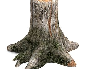 Old tree stump 3D timber