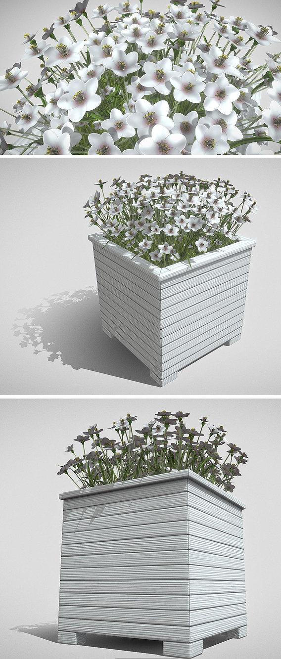 Public Plant Pot Wood-Version with White Flowers
