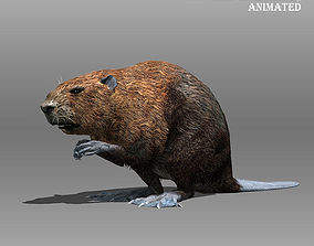 3D model Beaver Animated