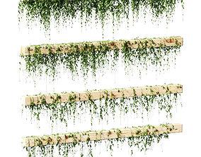 3D Ivy for beams or ceilings - 4 models
