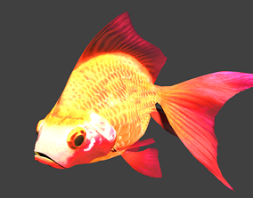 3D asset animated Goldfish