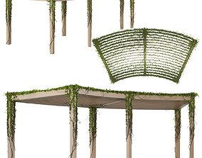 Pergola with Ivy v3 3D