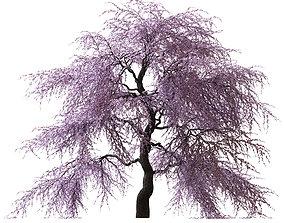 pink 3D Sakura Tree v2
