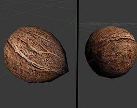 Coconut full in shell 01 3D model